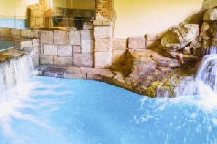 diverhotel tenerife spa garden bei its buchen With katzennetz balkon mit diverhotel spa garden tenerife